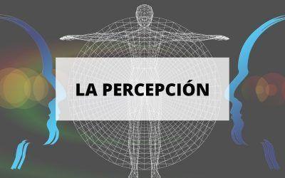 La percepción, factor clave para conseguir el éxito